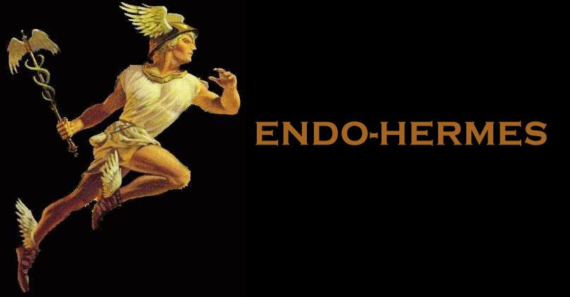 endo-hermes.jpg - 101.31 Kb